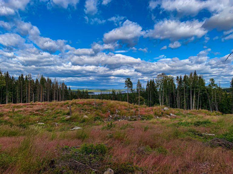 Glaskogens Naturreservat